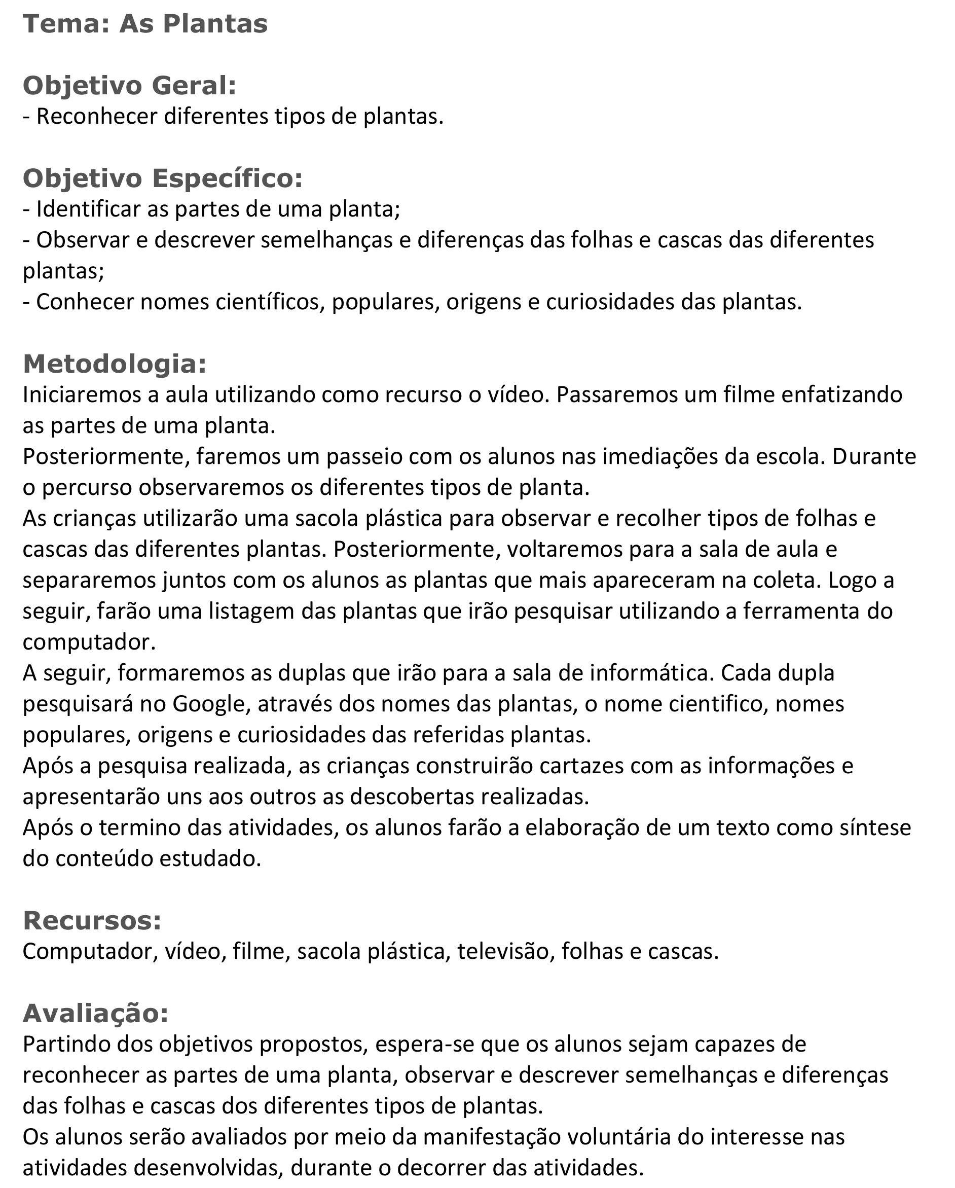Plano de aula - Profª Maria Jocélia Cosmo - Observar