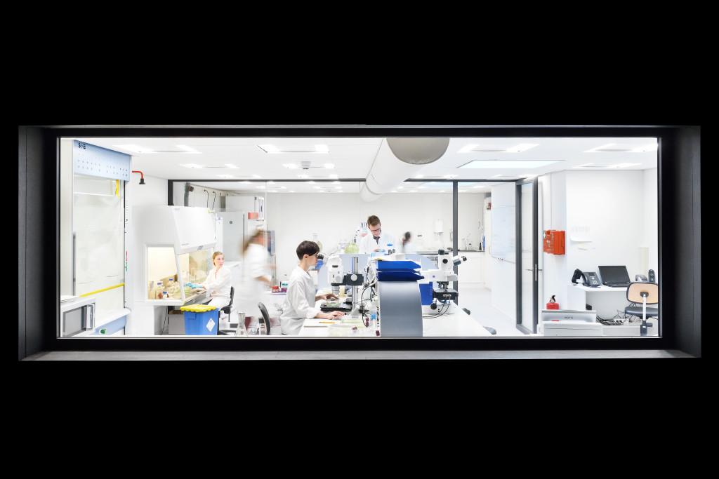 In the laboratory of Micropia laboratory technicians make cultures of micro-organisms. Photo Micropia, Maarten van der Wal