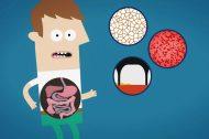 destaque-microbios-corpo-humano