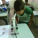 O ensino de ciências na visão dos alunos