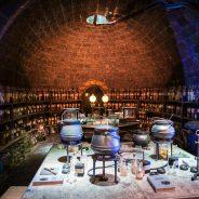 Entre a ciência e a magia do mundo de Harry Potter